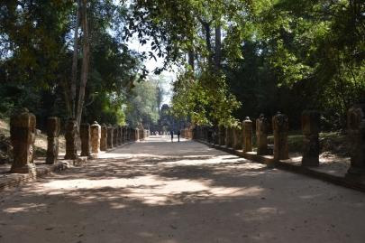 angkor (100)