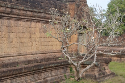 angkortemples (111)