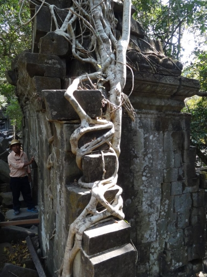 angkortemples (154)