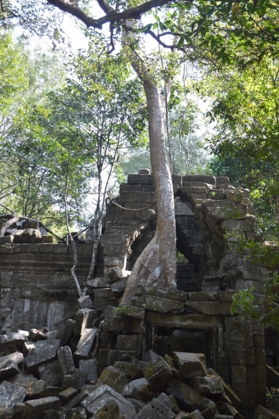angkortemples (21)