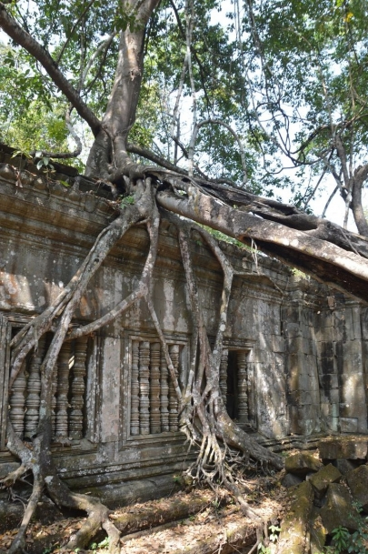 angkortemples (42)