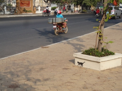 cambodiancookingclass (17)