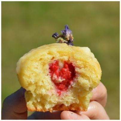 cupcake (1)