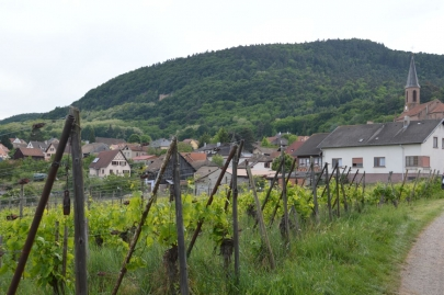 eguisheim (39)