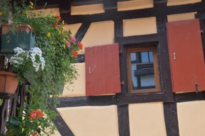eguisheim (5)