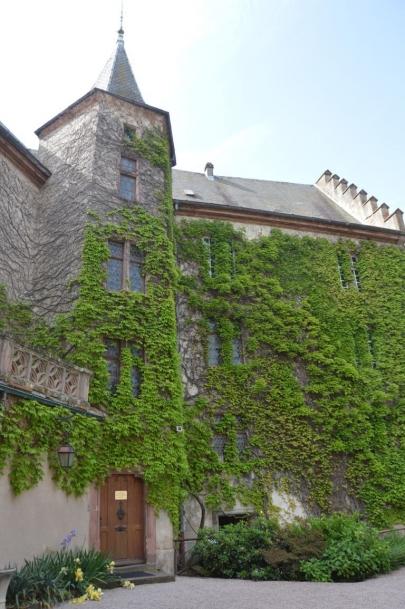 kientzheim (3)