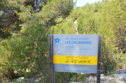 calanques_cassis (32)
