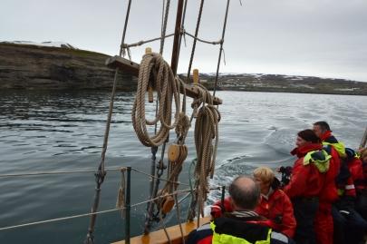 husavik-baleines (14)