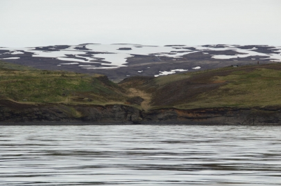 husavik-baleines (16)