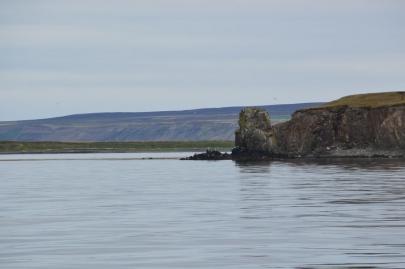 husavik-baleines (17)