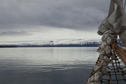 husavik-baleines (7)