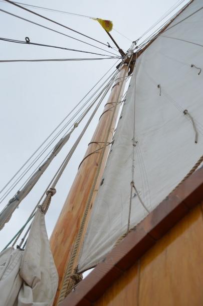 husavik-baleines (80)