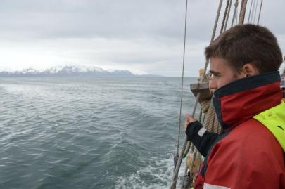 husavik-baleines (83)