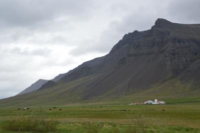 reykjavikakureyru (1)