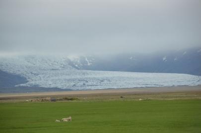 icebergs-islande (1)