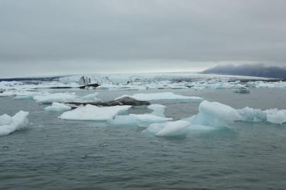 icebergs-islande (109)