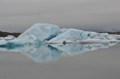 icebergs-islande (144)
