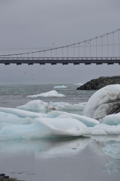 icebergs-islande (159)