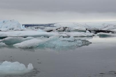 icebergs-islande (162)
