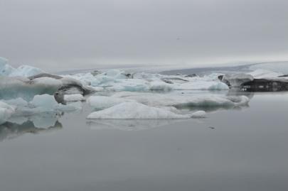 icebergs-islande (18)