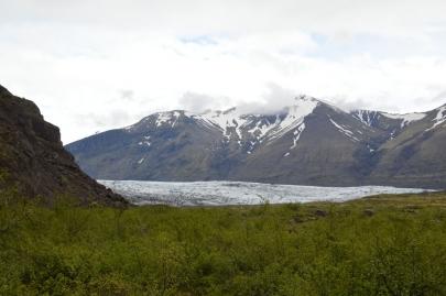 icebergs-islande (192)