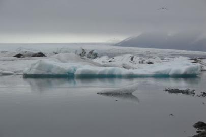 icebergs-islande (20)