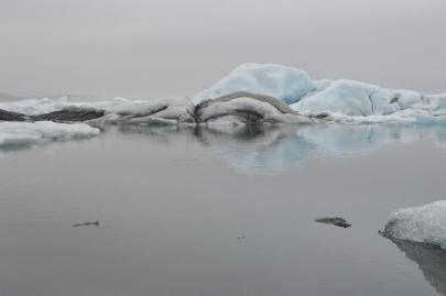 icebergs-islande (22)