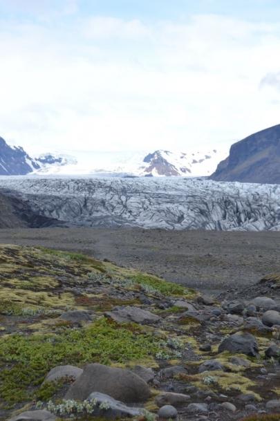 icebergs-islande (235)