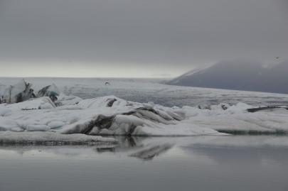 icebergs-islande (33)