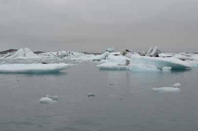 icebergs-islande (54)