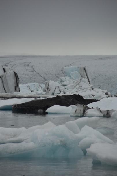 icebergs-islande (61)