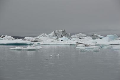 icebergs-islande (63)