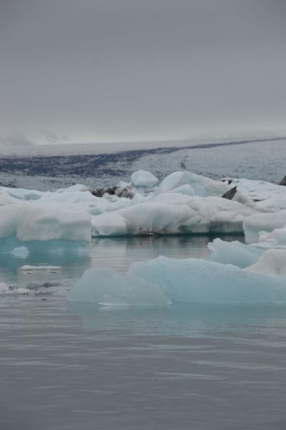 icebergs-islande (83)