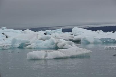 icebergs-islande (85)