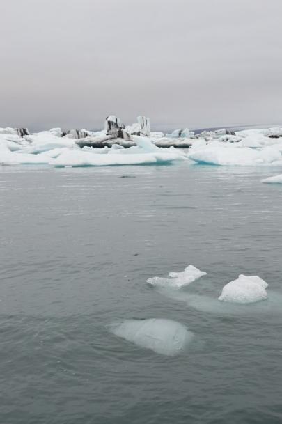 icebergs-islande (97)