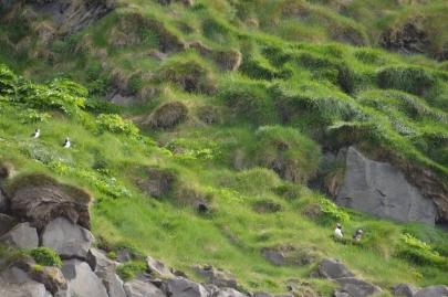 islande-roadtrip-sud (36)