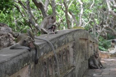 pranakorn-kiri-historical-park (106)