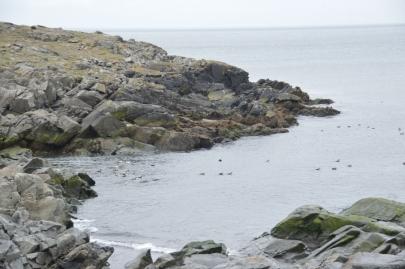 roadtrip-cote-est-islande (154)