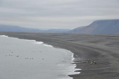 roadtrip-cote-est-islande (159)