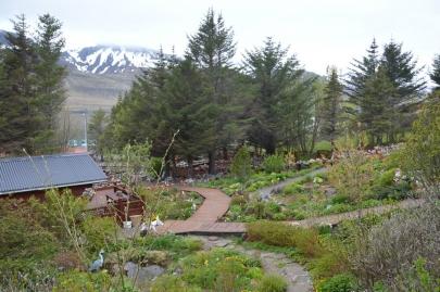roadtrip-cote-est-islande (45)