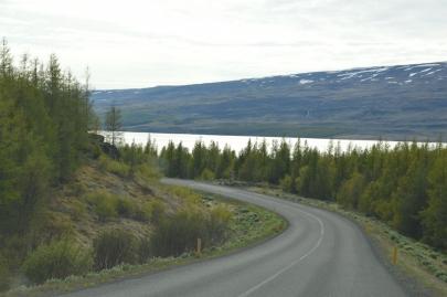 roadtrip-islande-est (55)