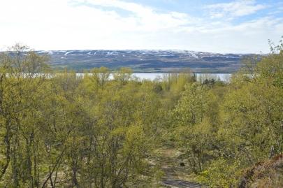 roadtrip-islande-est (66)