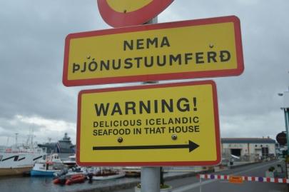 un-jour-a-reykjavik (131)