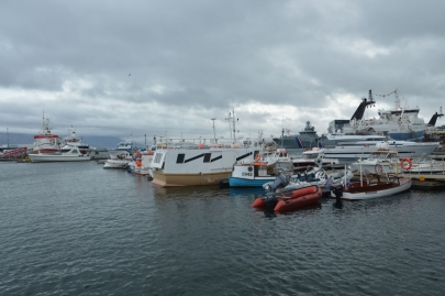 un-jour-a-reykjavik (132)
