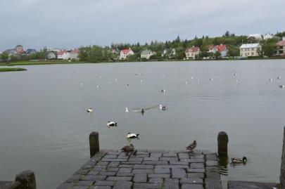 un-jour-a-reykjavik (9)