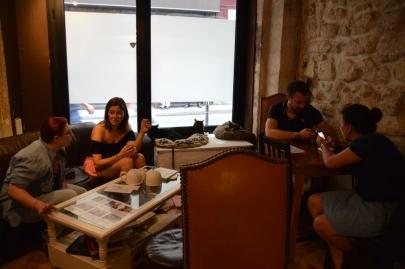 cafedeschats-paris (8)