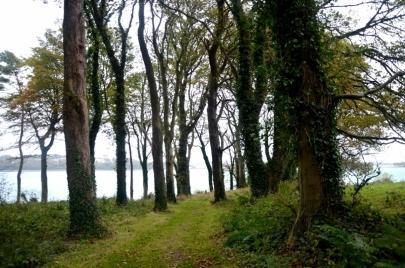 game-of-throne-tour-irlande-nord (150)