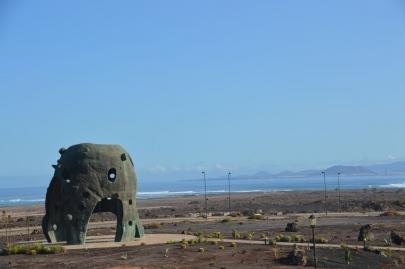 origo-mare-furerteventura (280)