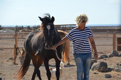 promenade-cheval-fuerteventura (14)