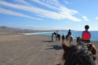 promenade-cheval-fuerteventura (30)